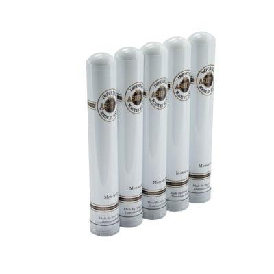 Ashton Classic Monarch (Aluminum Tube) 5 Pack-CI-ASH-MONN5PK - 400
