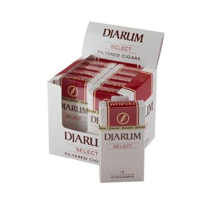 Djarum Select Filtered Cigar 10/12 - CI-DJM-MILDPK