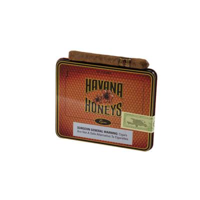 Havana Honeys Dominican Cigarillos Rum (10) - CI-HAH-TINRUMZ