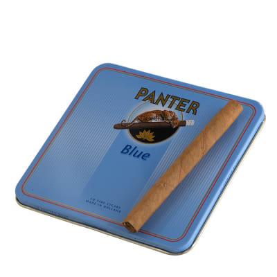 Panter Blue (10) - CI-PAN-BLUE10Z
