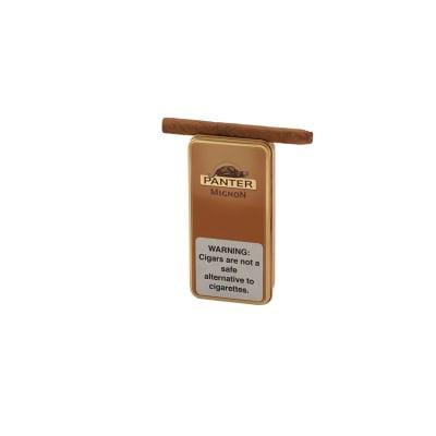 Panter Mignon (10) - CI-PAN-MIGNONZ